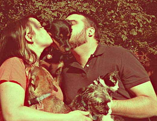 akziay animal family